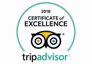 Guanajuato tour certificate of excellence TripAdvisor